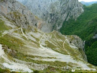 Picos de Europa-Naranjo Bulnes(Urriellu);Puente San Isidro; eresmas cercedilla trekking